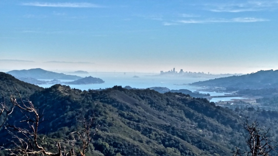 SF bay and city view